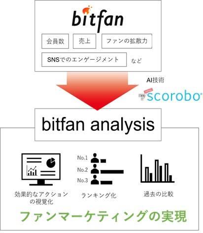 bitfan analysisの概要